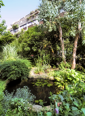 Pond, lush gardens and a block of flats