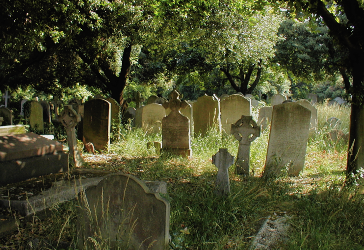 A shady corner of Brompton Cemetery