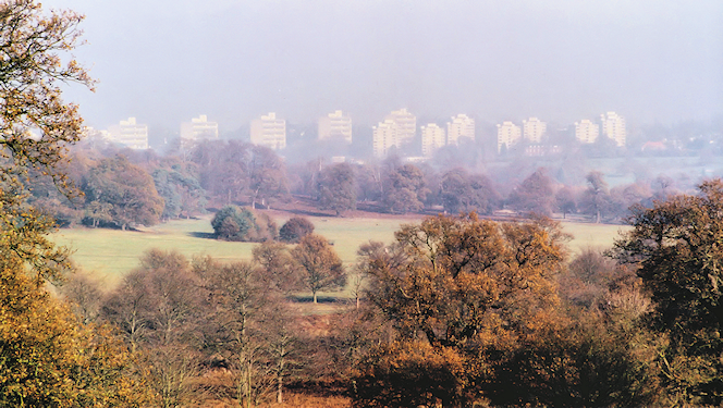 The Alton estate, seen through the haze from Richmond Park