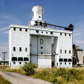 The grade II-listed 'D' Silo at Pontoon Dock