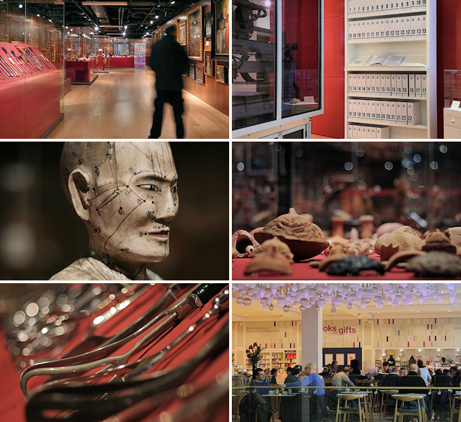 Wellcome Collection images, including the the Medicine Man permanent exhibition and the bookshop and café
