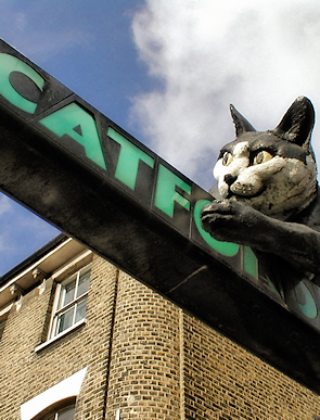 The Catford Cat, a fibreglass sculpture above the entrance to the Catford Centre, a landmark the council would probably prefer not to have