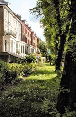 Leafy Belsize Avenue