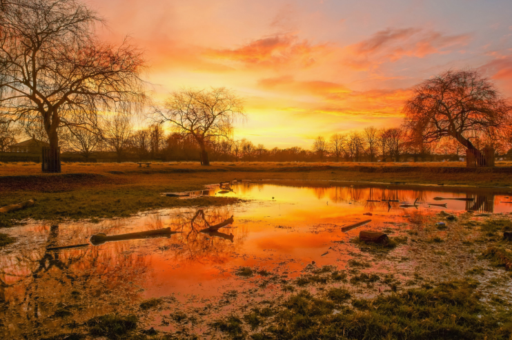Hampton Hill Pond sunset