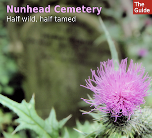 Nunhead Cemetery - half wild, half tamed