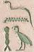Petrie hieroglyphics