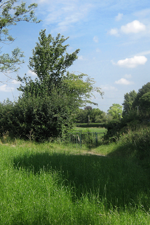 Footpath and bridleway junction beside Cudham Lane North
