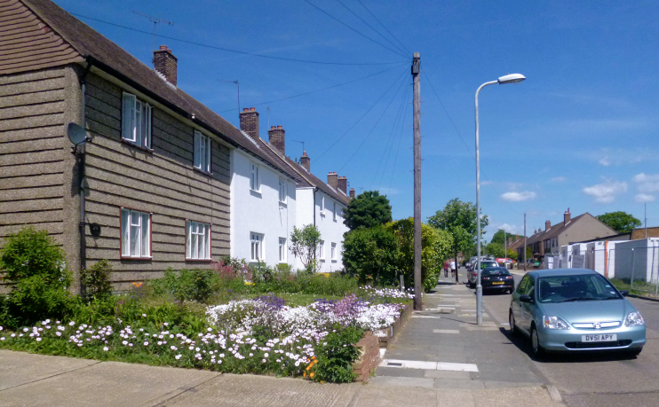 Flowers in Newmarket Way - geograph-3495731-by-Des-Blenkinsopp