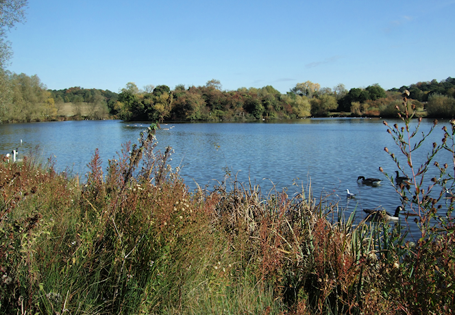geograph-2667749-by-Richard-Hoare - Island on Hainault Forest Country Park