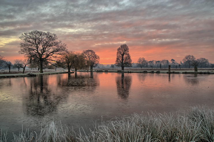 Derek Winterburn - Bushy Park