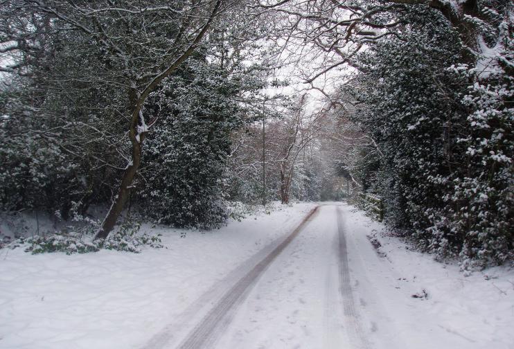 Arkley Lane in the snow by Bikeboy