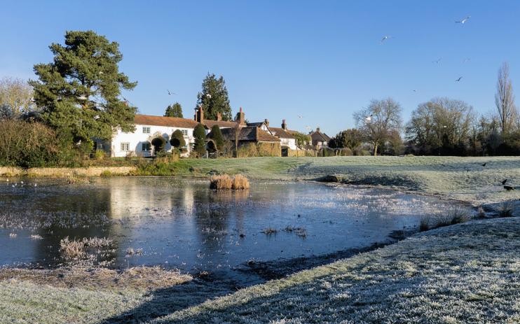 Hidden London: Bradmore Green pond, Old Coulsdon