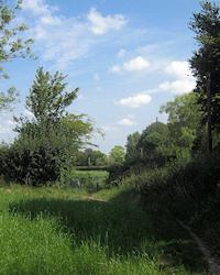 Footpath and bridleway junction beside Cudham Lane North