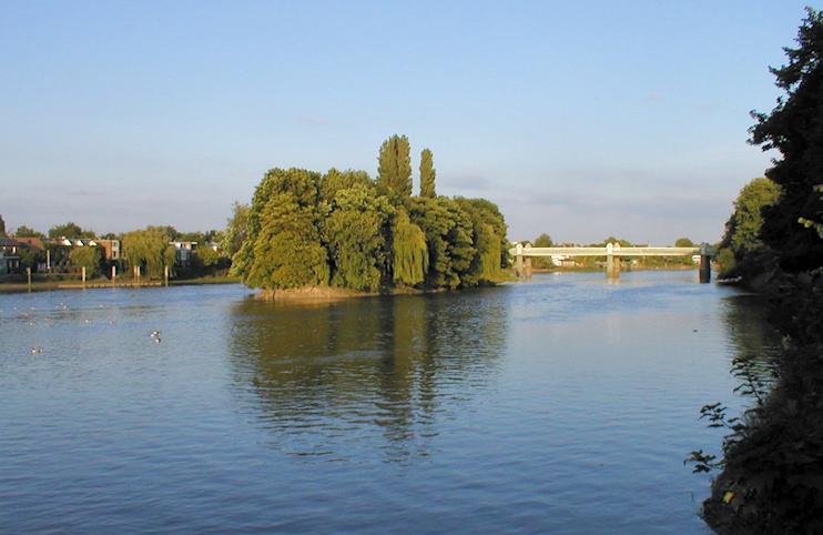 Hidden London: Oliver's Island seen from the Surrey bank, with Kew railway bridge behind