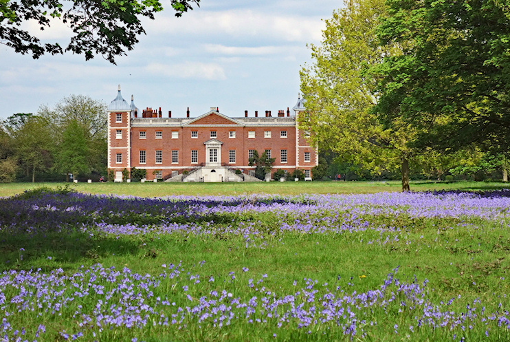 Hidden London: Bluebells in Osterley Park by Julian Osley