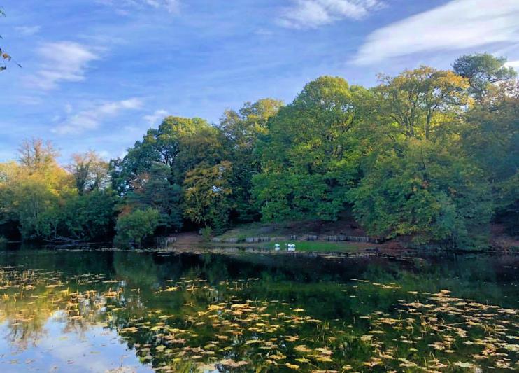Hidden London: Keston Ponds by Joanne Blakemore