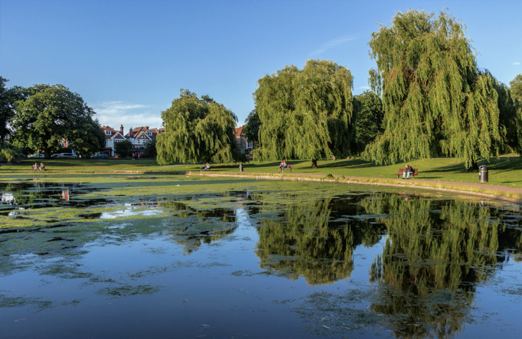 Hidden London: Reflections in Broomfield Park lake by Christine Matthews