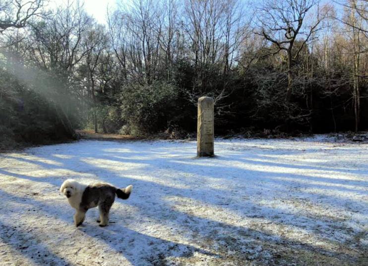 Hidden London: William Willett memorial obelisk and sundial by Graham Seppings