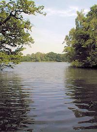 Hidden London: Eagle Pond, Snaresbrook