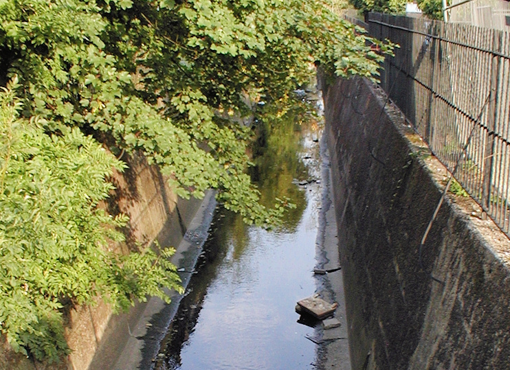 Hidden London: The River Graveney looking miserable in a culvert