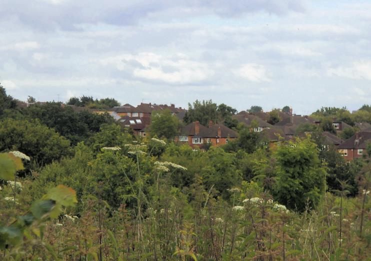 Hidden London: View across Woodside Park from the fields, by David Howard