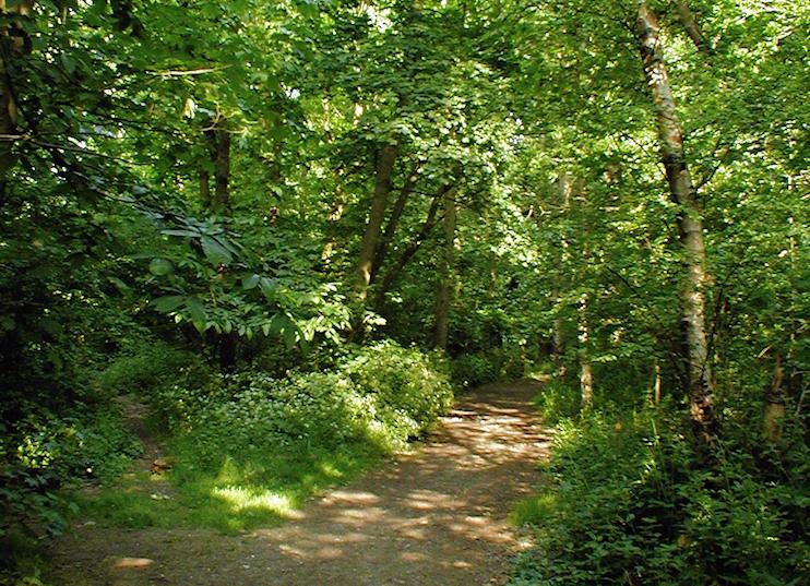Hidden London: Elmstead Wood