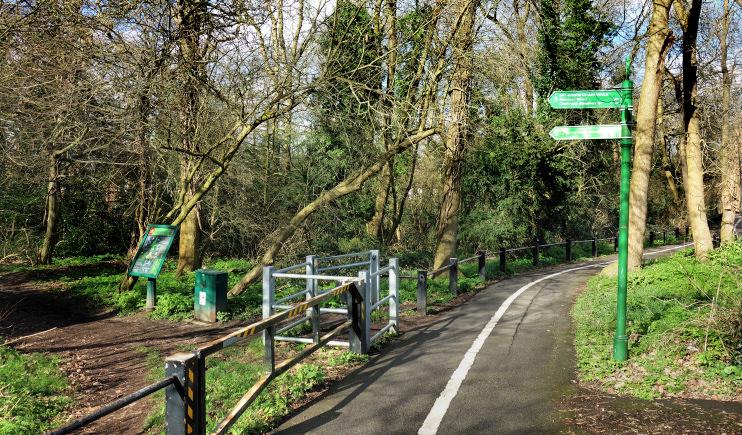 Hidden London: Green Chain Path, Elmstead Wood by Des Blenkinsopp